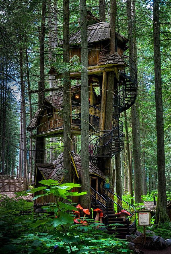 Three_Story_Treehouse_British_Columbia.jpg