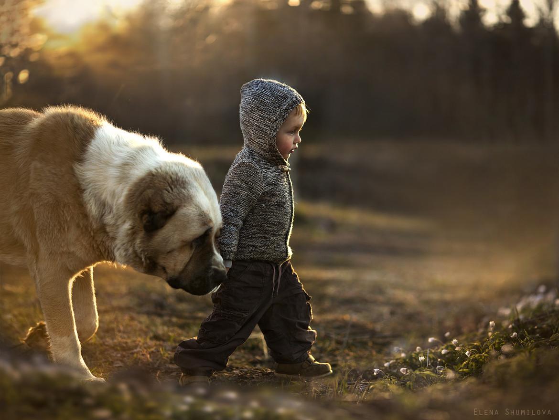 boy_and_dog.jpg