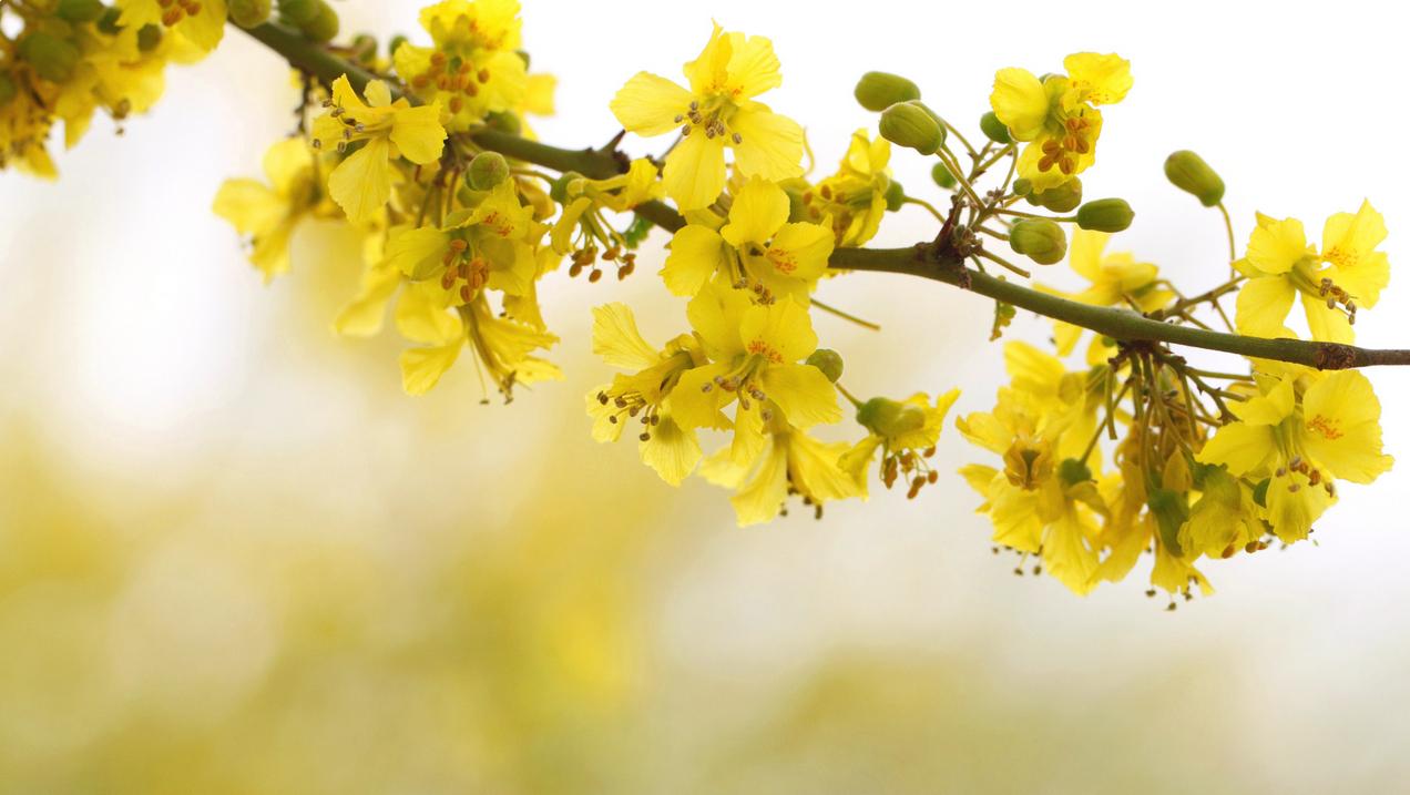 spring-67.jpg